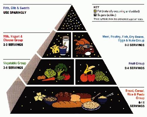 The Food Pyramid.